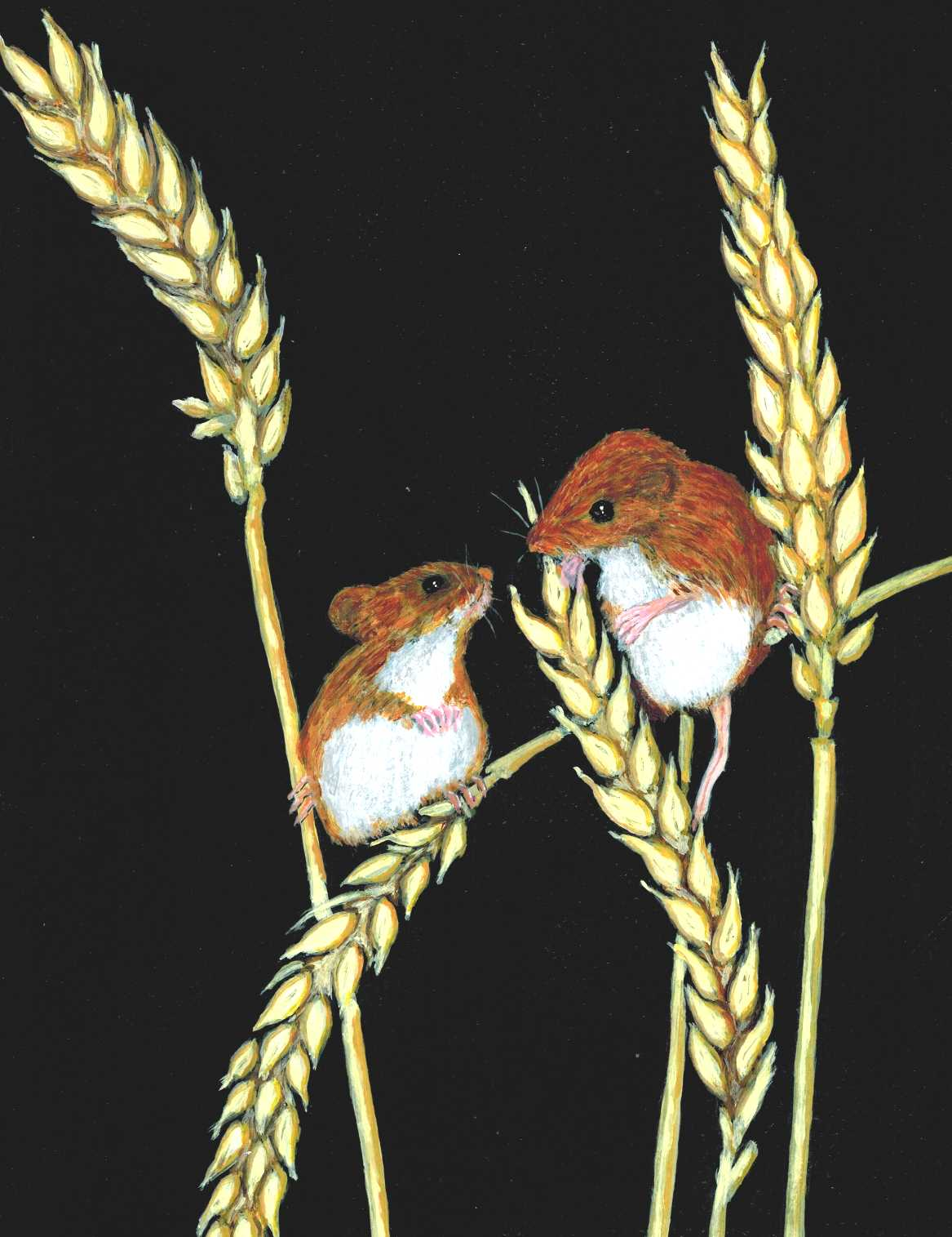 Original painting by Nelson Kruschandl, Field Mice, acrylic on paper