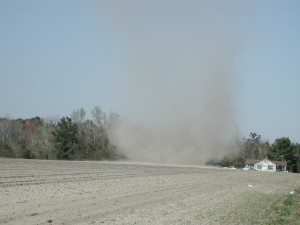 Whirlwind tornado dust devil in Johnsonville, South Carolina
